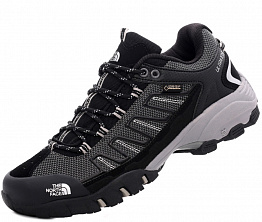 Кроссовки The North Face Ultra 109 GTX Gray / Black